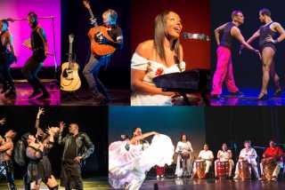 Fresh Meat Festival 2020 showcases transgender & queer music, dance, performance