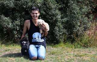 Business Briefs: SF pet care provider pivots focus